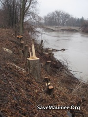 DURING REMOVAL of vegetation on levees in Fort Wayne