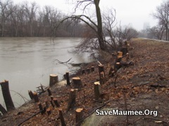 looking toward City of Fort Wayne from local rivers