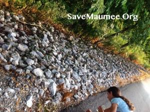 Fort Wayne vegetation removal on Levees
