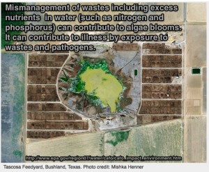 CAFO from space EPA